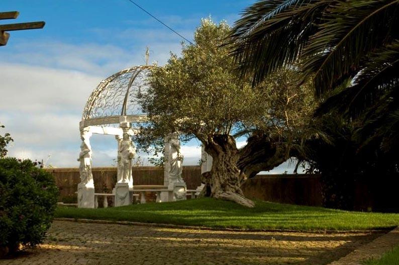 Casa de Luxo - Sintra-1