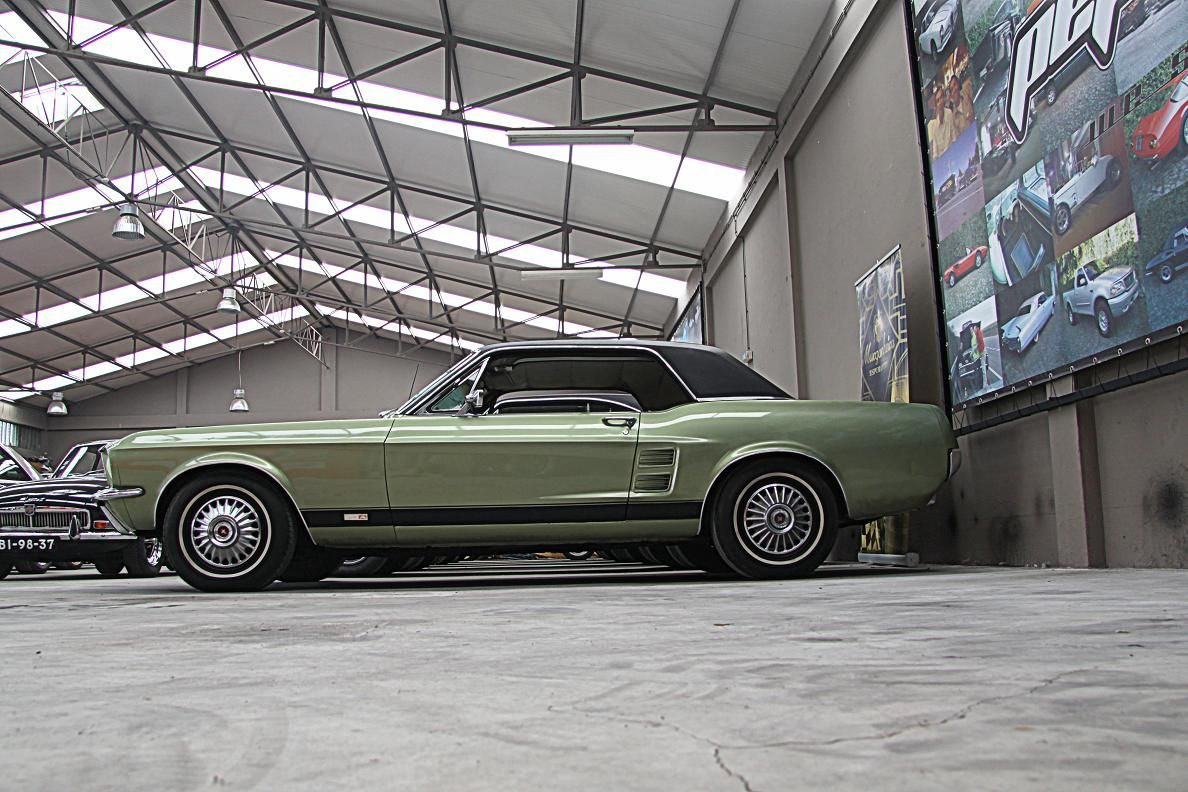 Ford Mustang V8-3