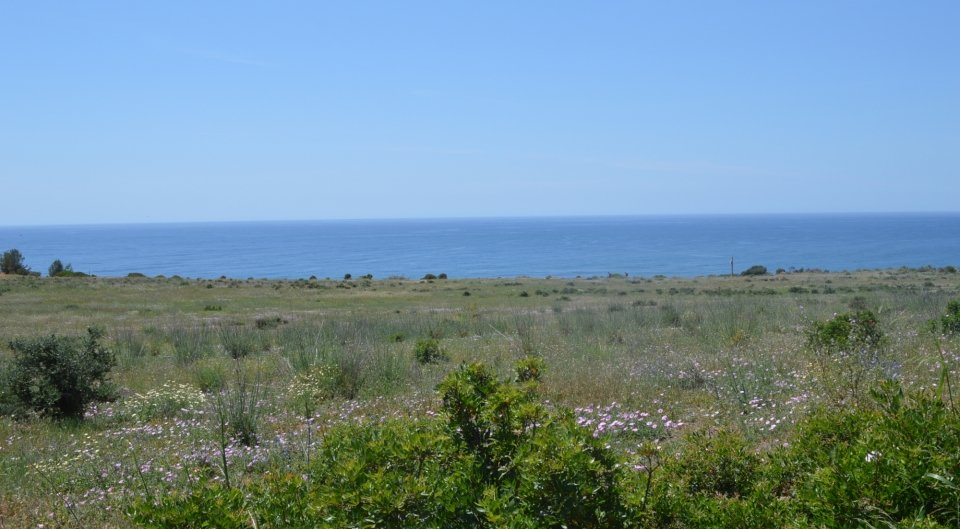 Grande terreno na  linha da frente para venda em Algarve, Portugal_2