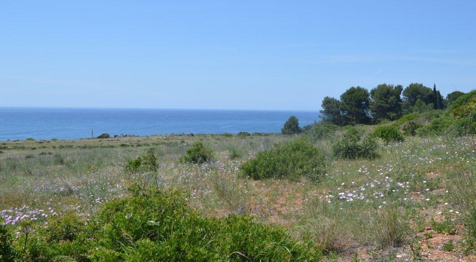 Grande terreno na  linha da frente para venda em Algarve, Portugal_4