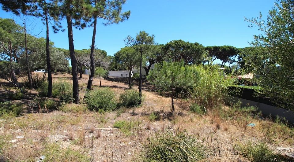 Lote de terreno  para construção de Moradia perto da Quinta do Lago_1