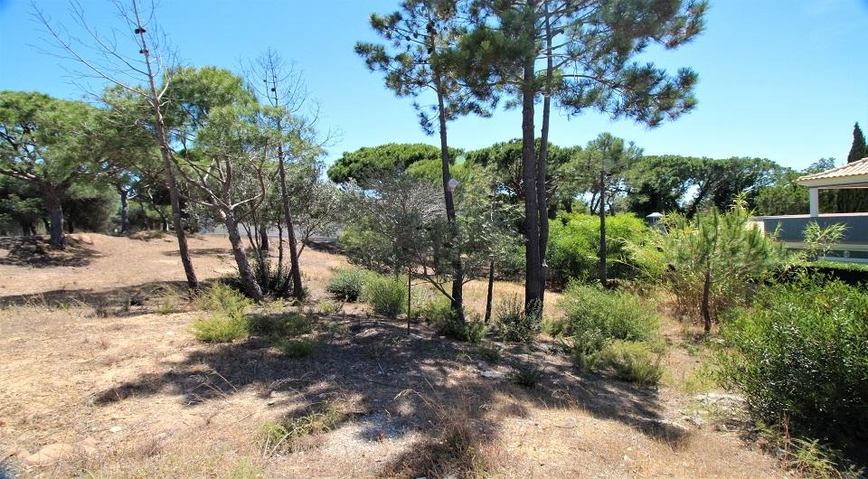 Lote de terreno  para construção de Moradia perto da Quinta do Lago_2