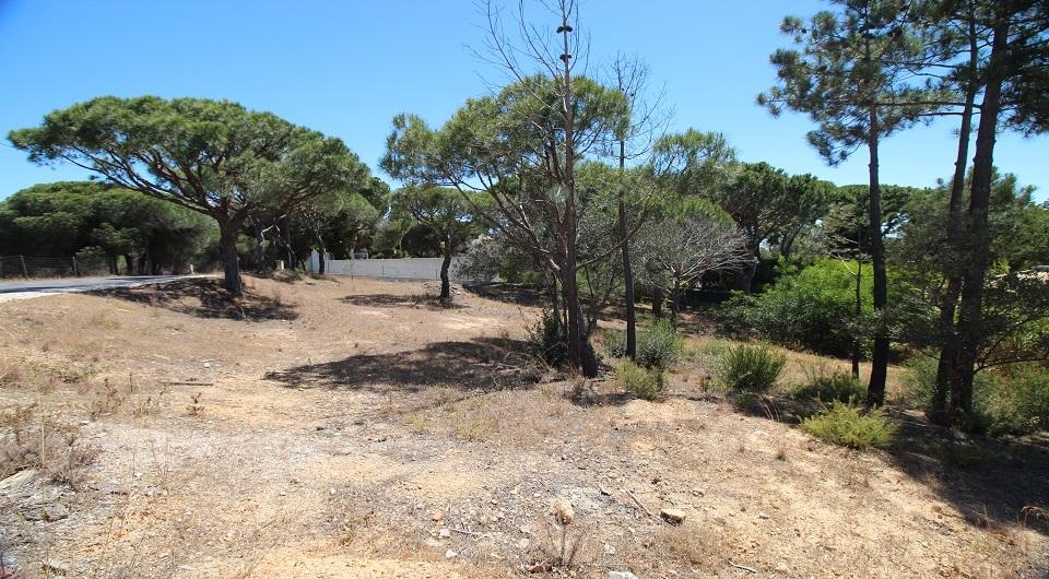 Lote de terreno  para construção de Moradia perto da Quinta do Lago_3