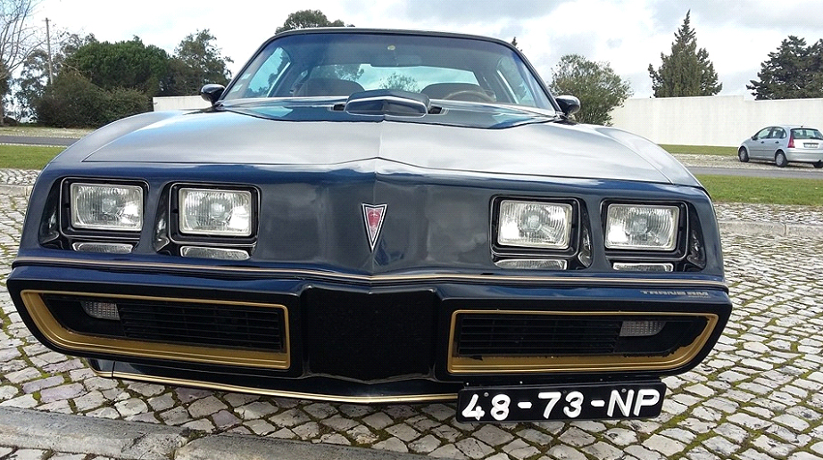 Pontiac Trans am Firebird-6