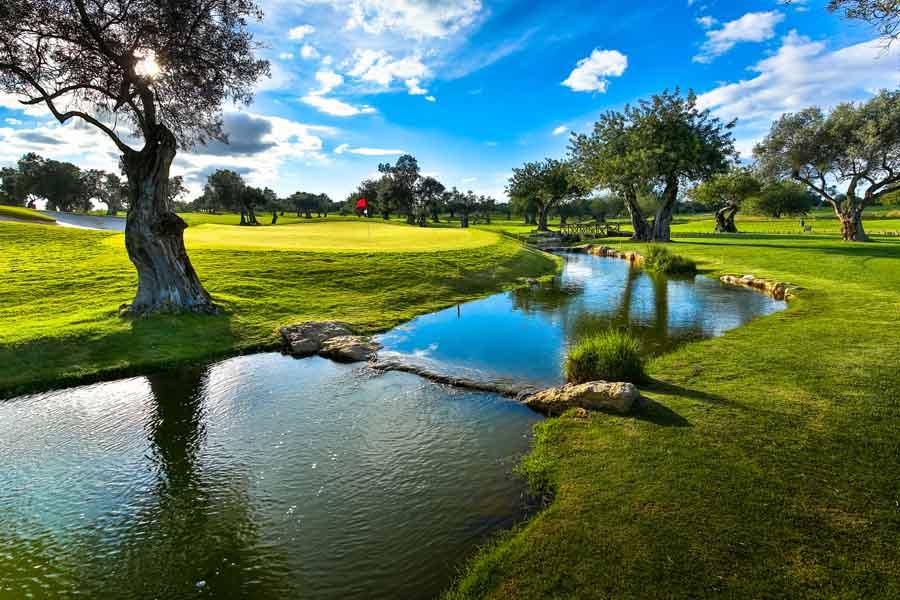 Quinta da Ria – Ria & Cima Golf Courses-3