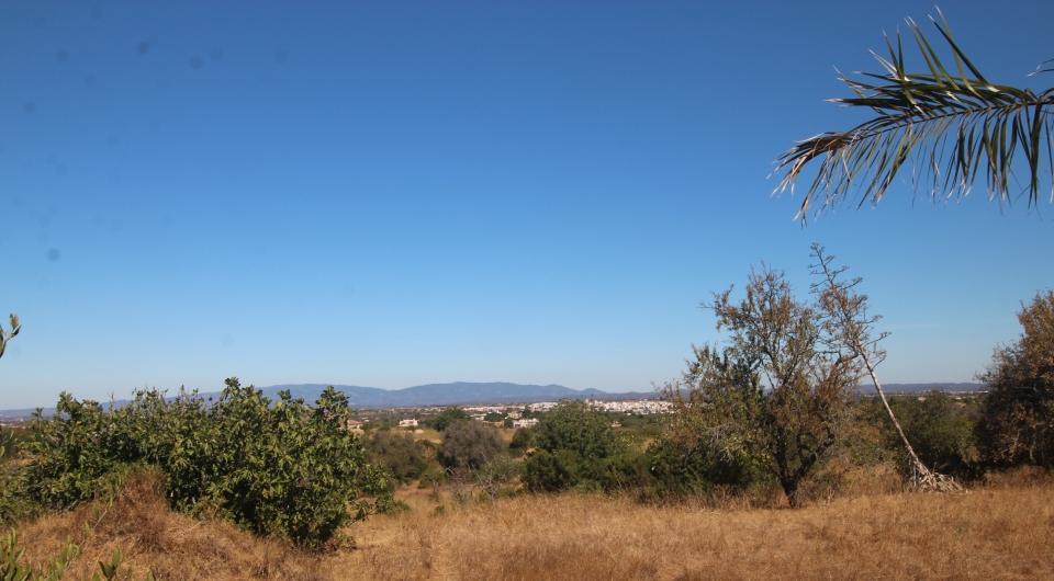 Terreno Rustico com duas ruinas para venda, Carvoeiro_2