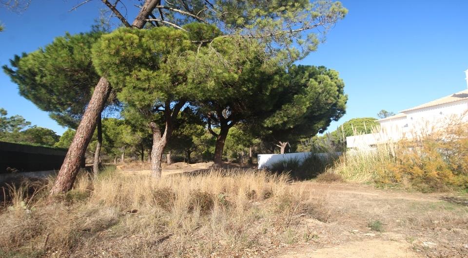 Terreno para venda nas Varandas do Lago Quinta do Lago_2