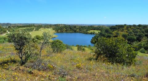 Fantástico terreno com vista para Jack Nicklaus Signature Campo de Go_1