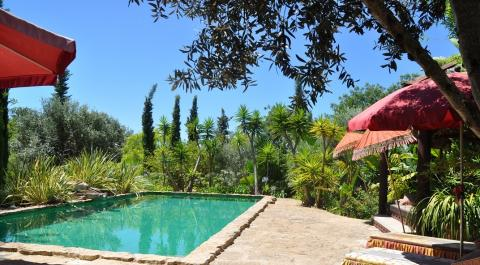 Única propriedade rural de Santa Barbara de Nexe, Algarve _1